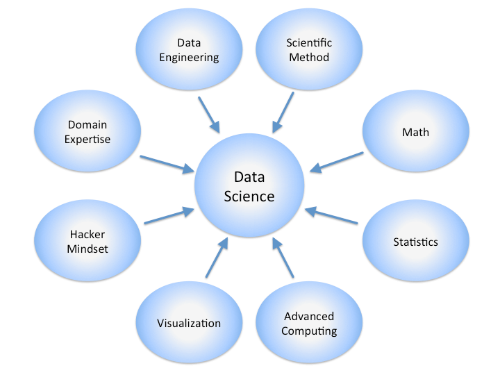 What Does a Data Scientist Do?