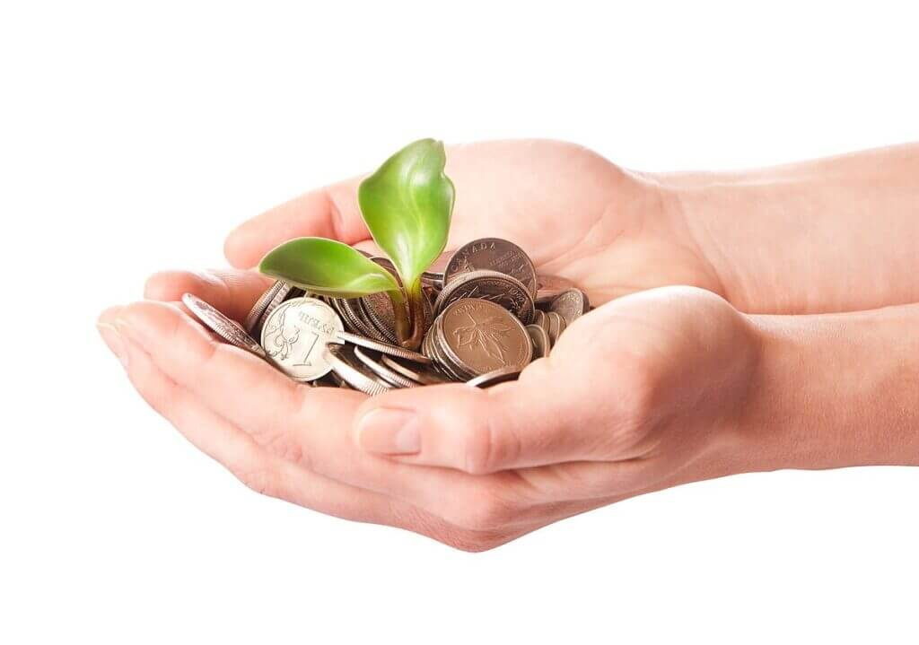 Seed Capital - In Hand Growing Plant + Money growth
